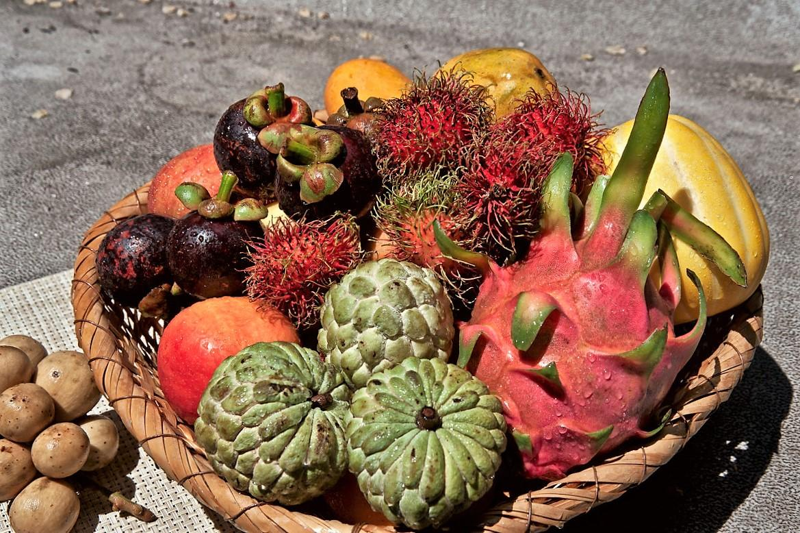 HOW AND IN WHAT QUANTITY DO YOU WANT TO EXPORT THE FRUITS FROM VIETNAM?