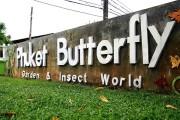 Парк бабочек, Пхукет -  места посещения и рекомендации
