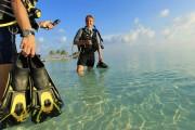 Дайвинг в Тайланде: лучшие места для погружений, цены и рекомендации туристам