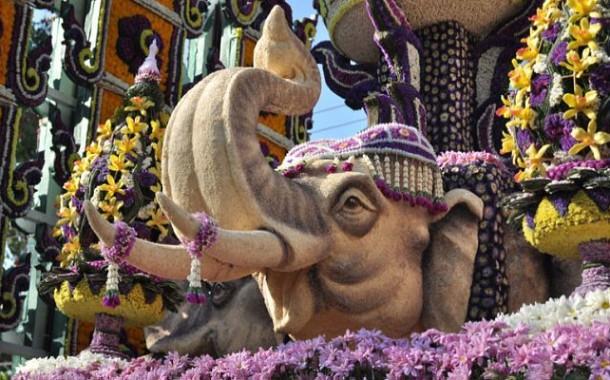 Фестиваль цветов в Таиланде - легенда и особенности праздника