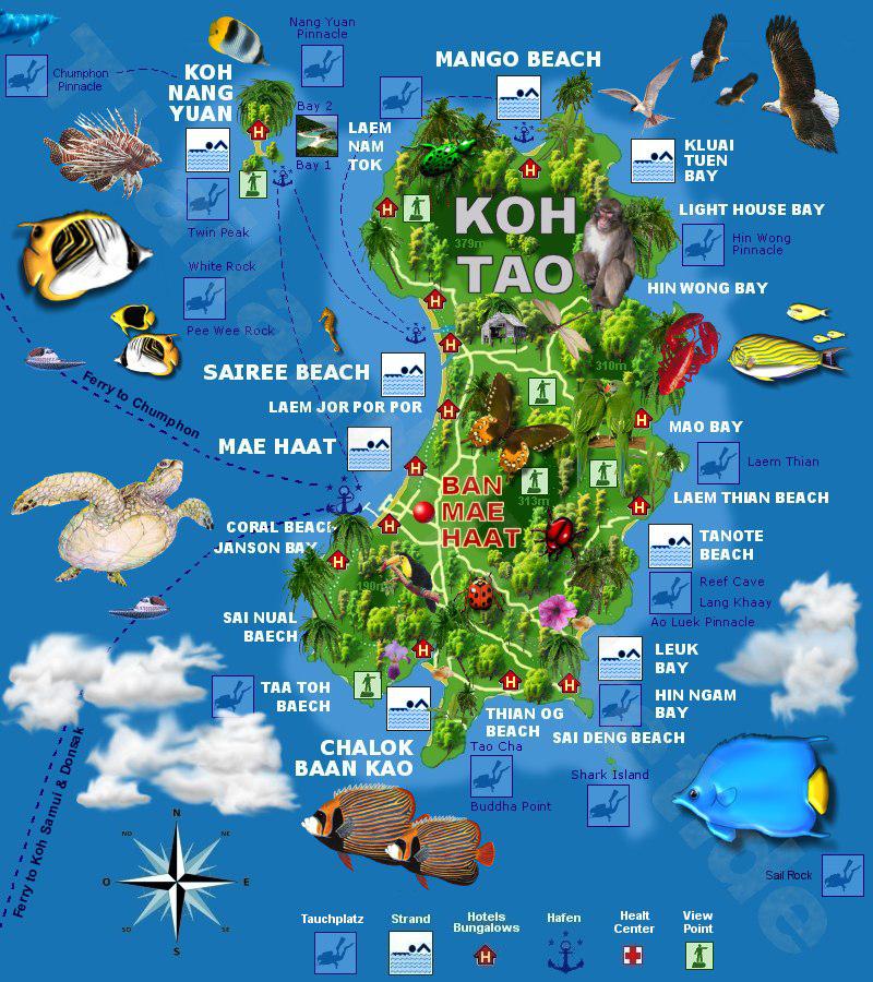 แผนที่เกาะเต่า