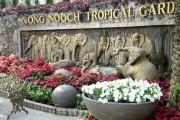 Тропический парк Нонг Нуч - места посещения и рекомендации