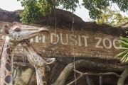 Зоопарк Дусит - что посмотреть и как ориентироваться