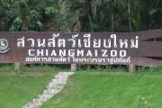 Городской зоопарк Чианг Мая (Chiang Mai Zoo)