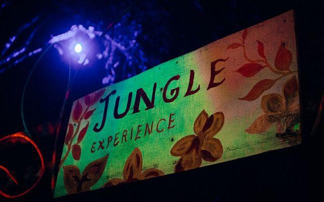 Jungle-Experience