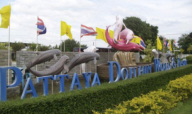 Дельфинарий Pattaya Dolphin World в Паттайе