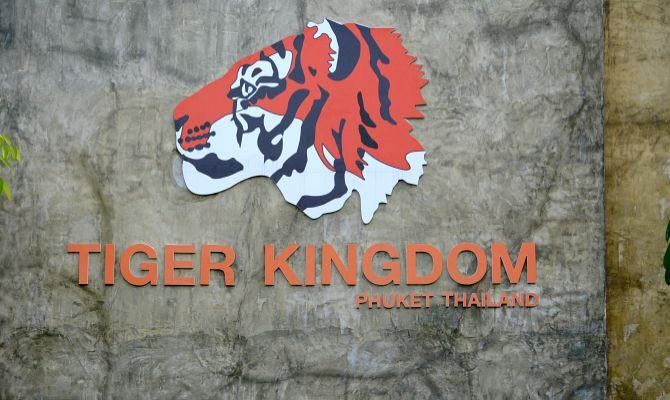 тигринное королевство