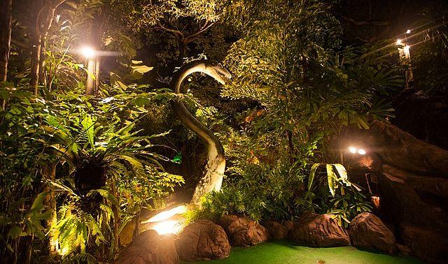 дино парк вечером