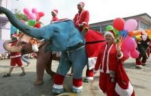 Как принято праздновать Новый год в Тайланде