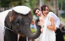 Медовый месяц в Тайланде - рай для молодоженов