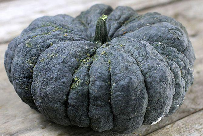 Thai-Kang-Kob-Pumpkin-web