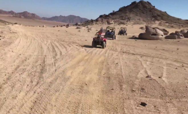 сафари пустыня