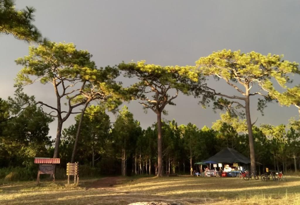 Природа Phu Kradueng