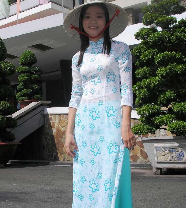 A Woman Wearing Vietnam's Traditional Dress