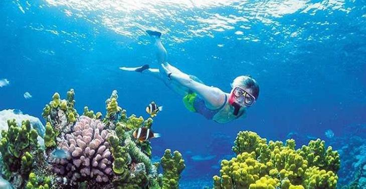Snorkelling in the Cham Islands