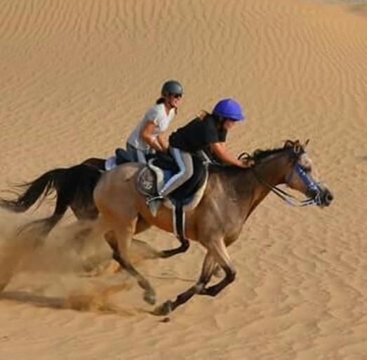 Верховая езда в Дубае