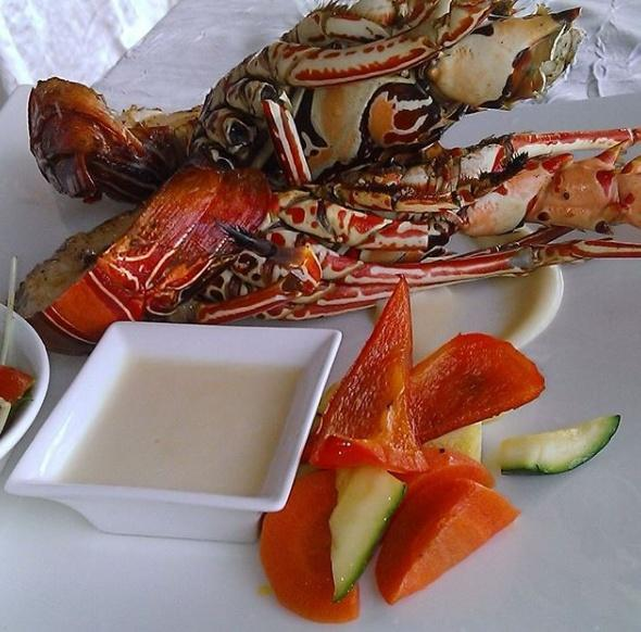 Maldivian Live Lobster