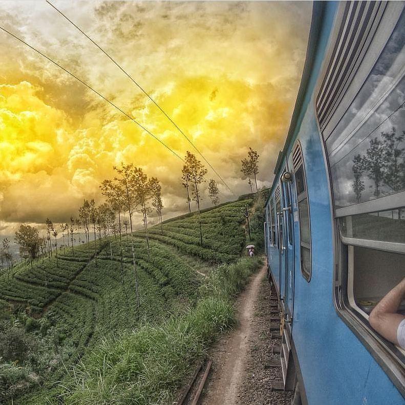 Как добраться из Коломбо в Канди в Шри Ланке