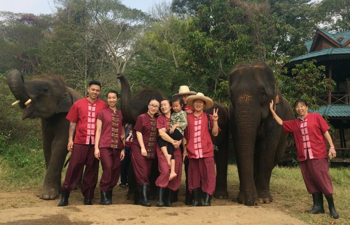 The Elephant Rescue Park