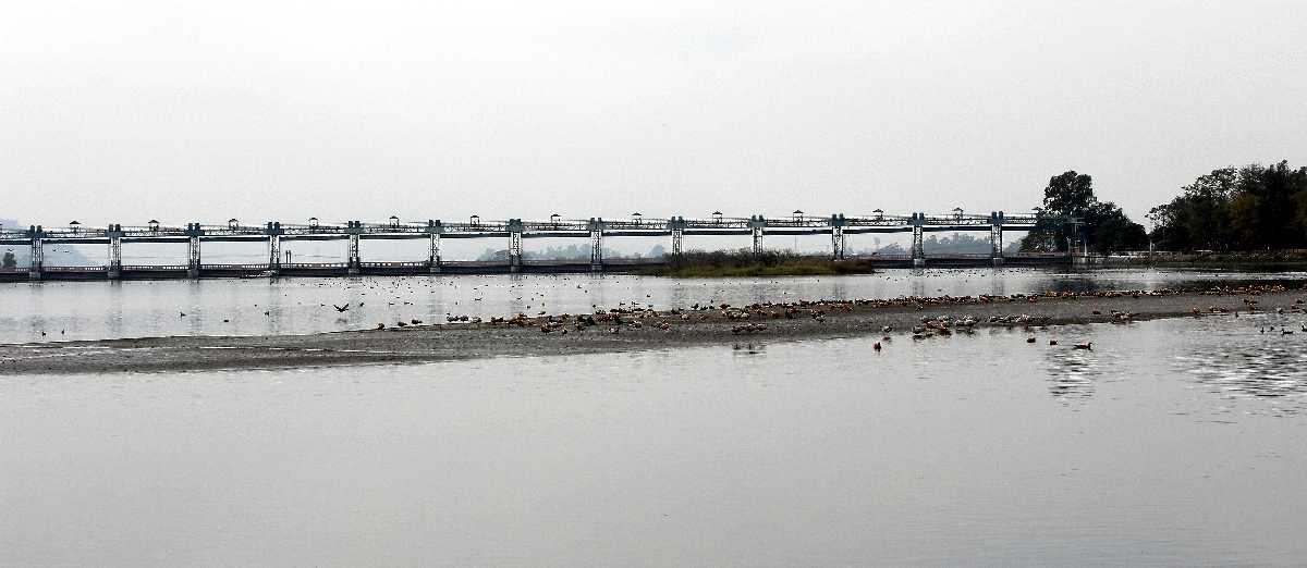 Asan Barrage, Uttarakhand