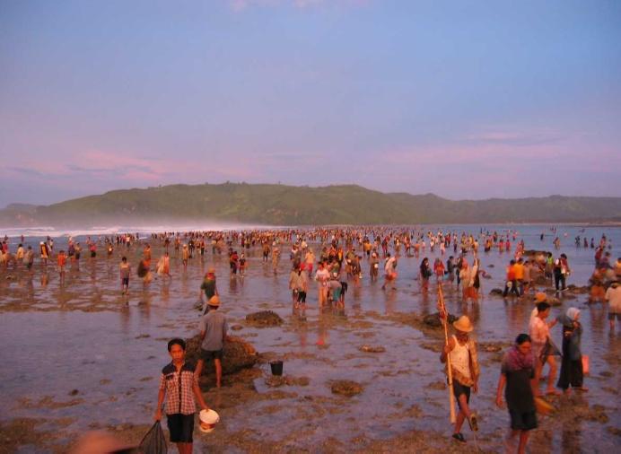 เทศกาลตกปลา Bau nyale