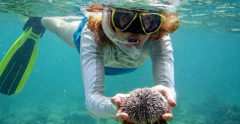 diving-krabi